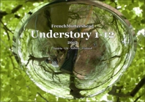 Understory 1-12 (Catalogue)