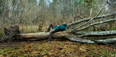 Read response to Afterlife Woodland by Agnieszka Gratza (arts journalist and critic)